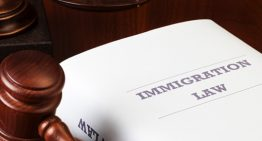 Tips to Hire the Right US Immigration Law Firm