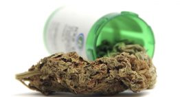Michigan Increases the Listing of Qualifying Medicinal Marijuana Conditions