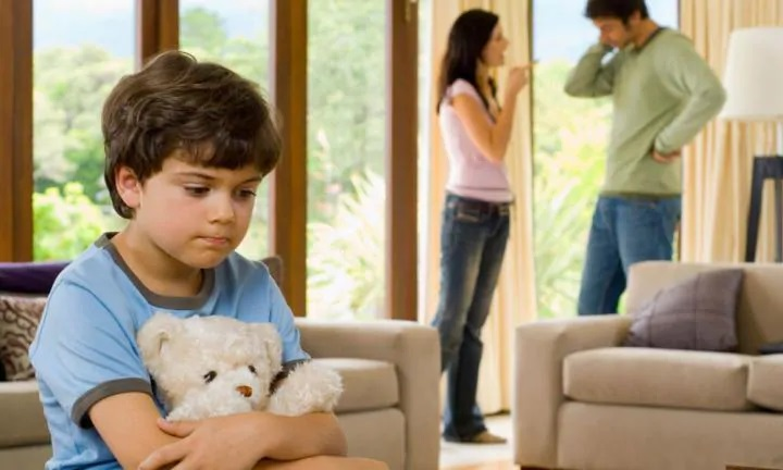 Addressing the Domestic Violence Issues with Legal process