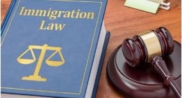 Facts on choosing an immigration lawyer