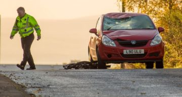 Driving carelessly can kill
