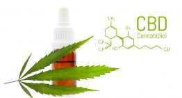 A guide to UKs CBD laws