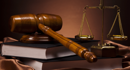 How to choose the best intellectual Property Lawyer?