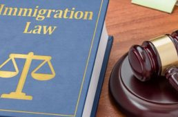Turkish Immigration Requirements and Immigration Lawyers